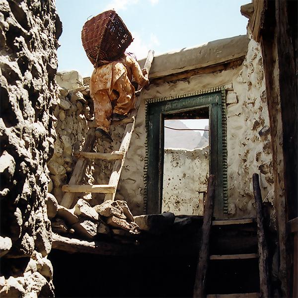 climbing-ladders-pakistan