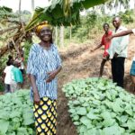 Integrity Insights – Remote PEAs: Insights from Kasai, Democratic Republic of Congo